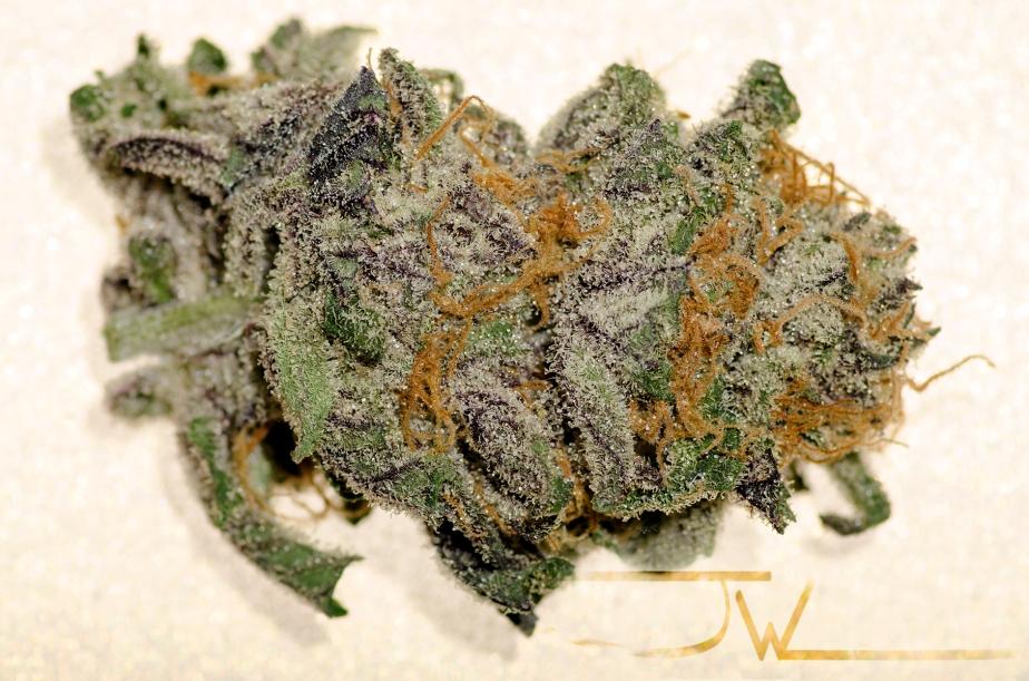Legal Marijuana!