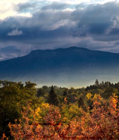 Mt Harris Autumn