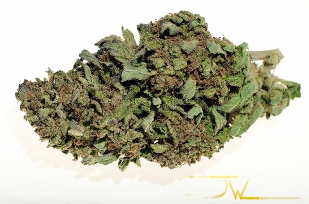 THC tastes great!