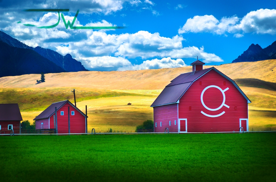 Happy Eye Barn