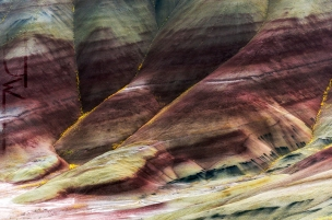 Spring at Painted Hills