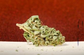 Get High!
