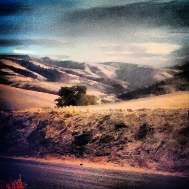 Dirt Hills