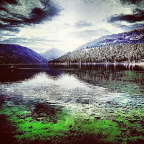 Wallowa Summer