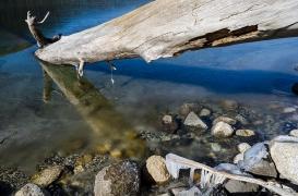 Log in Winter Water