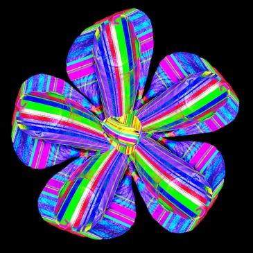 Male Flower