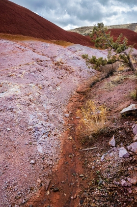 Erosion at Painted Hills