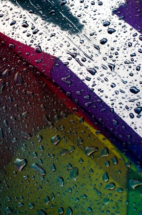 Wet Reflection