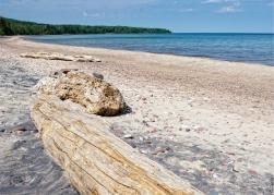 Logs along the beach.